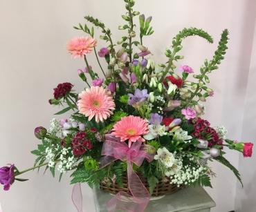 Gerbera Daisy Memorial Tribute
